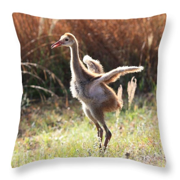 Winging It In The Morning Throw Pillow by Carol Groenen
