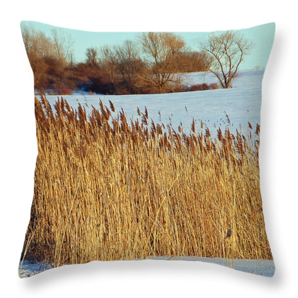 Winter Breeze Throw Pillow by Aimee L Maher Photography and Art