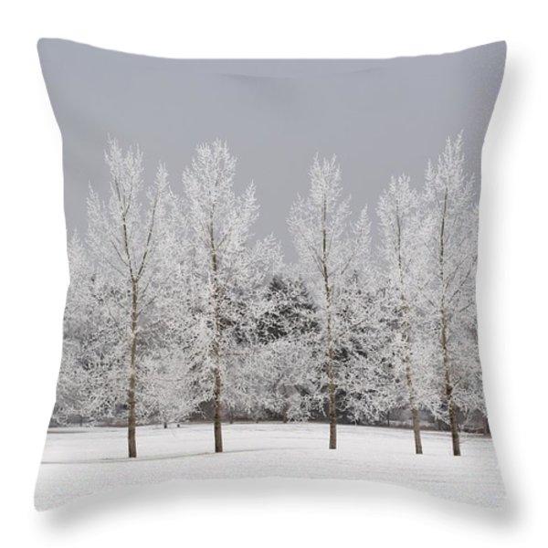 Winter, Calgary, Alberta, Canada Throw Pillow by Michael Interisano