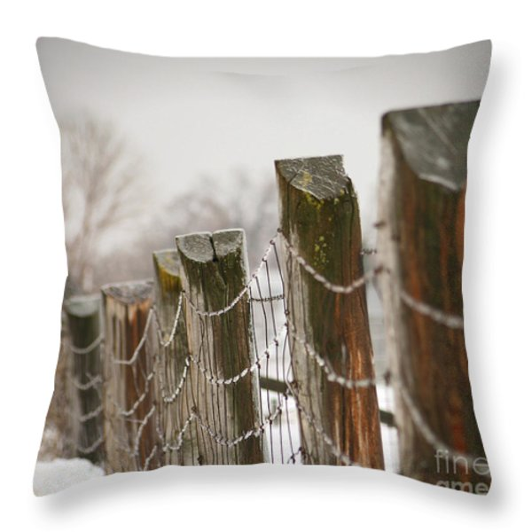 Winter Fence Throw Pillow by Sandra Cunningham