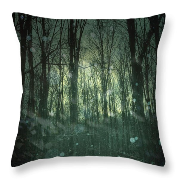 Winter forest at twilight Throw Pillow by Sandra Cunningham
