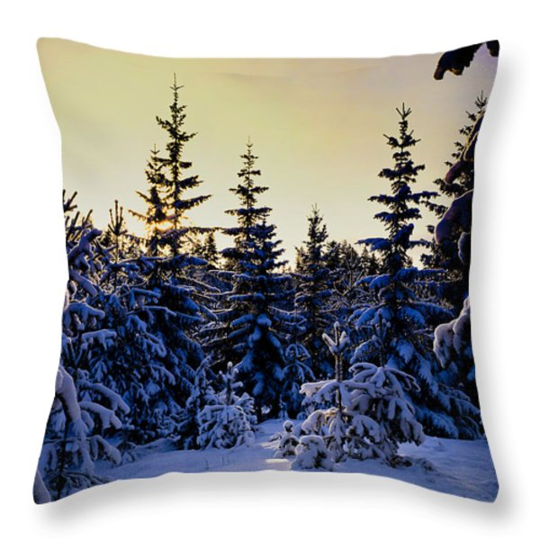Winter Forest Throw Pillow by Hakon Soreide