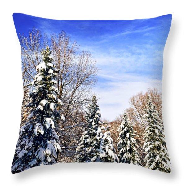 Winter forest under snow Throw Pillow by Elena Elisseeva