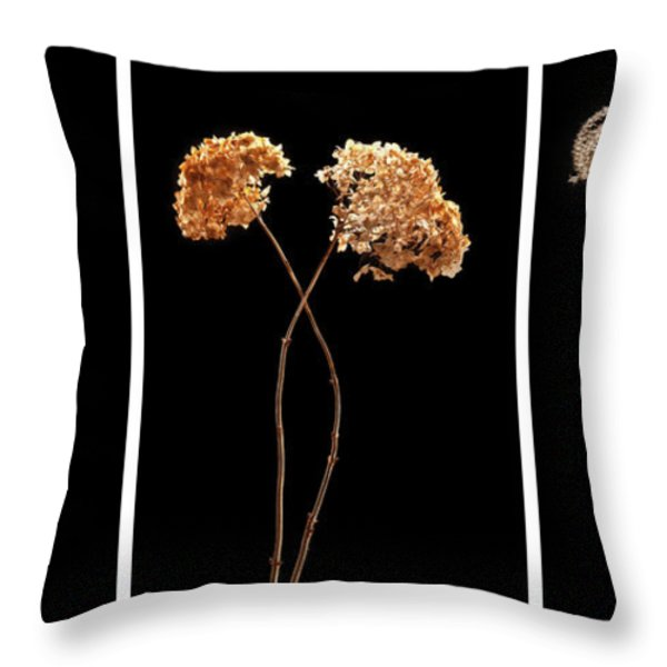 Winter Garden Triptych Throw Pillow by Steve Gadomski