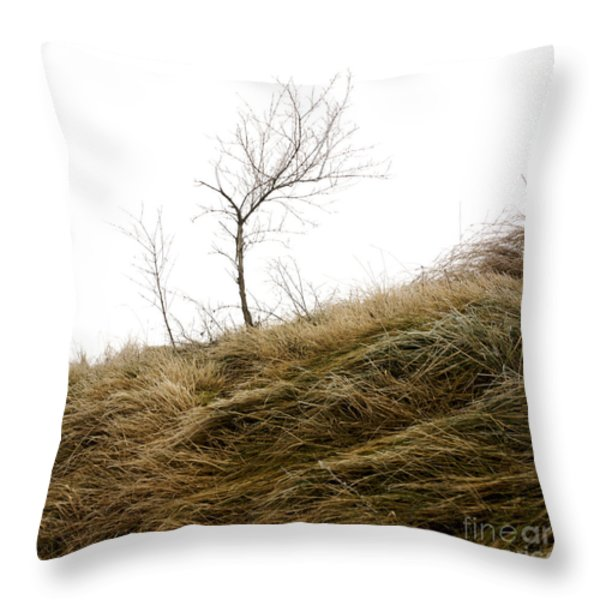 Winter landscape Throw Pillow by BERNARD JAUBERT