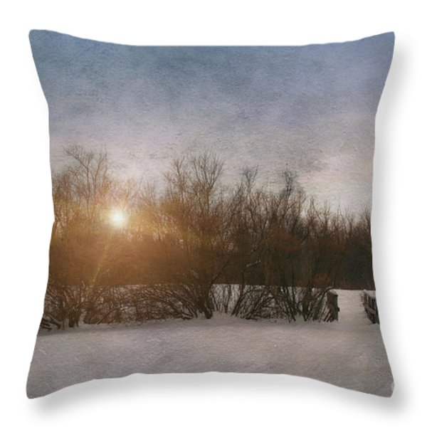 Winter landscape  Throw Pillow by Sandra Cunningham