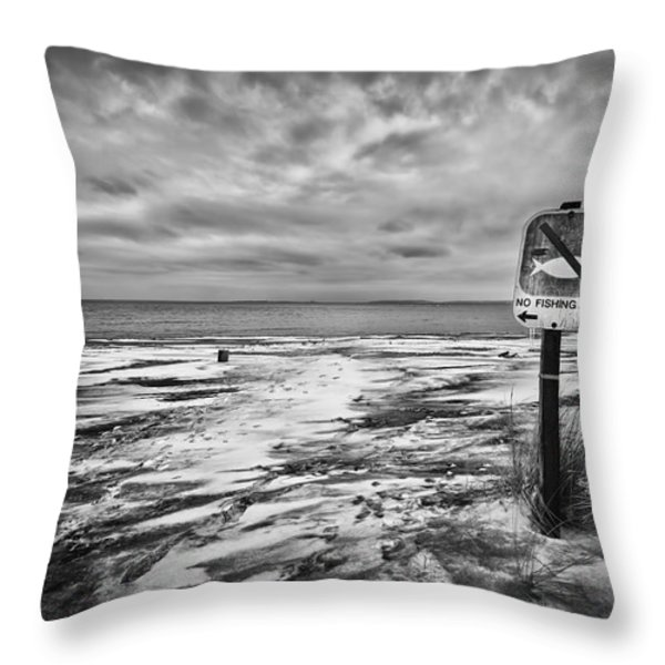 Winter... Or Three Months Of Silence Throw Pillow by Evelina Kremsdorf