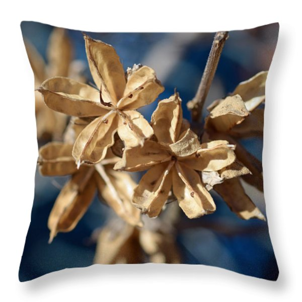 Winter Remainder Throw Pillow by Lisa  Phillips