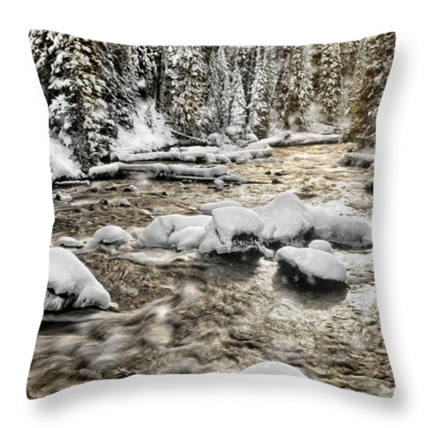 Winter River Throw Pillow by Leland D Howard