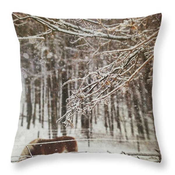 Winter Scene With Horse Grazing In Wooded Pasture Throw Pillow by Sandra Cunningham