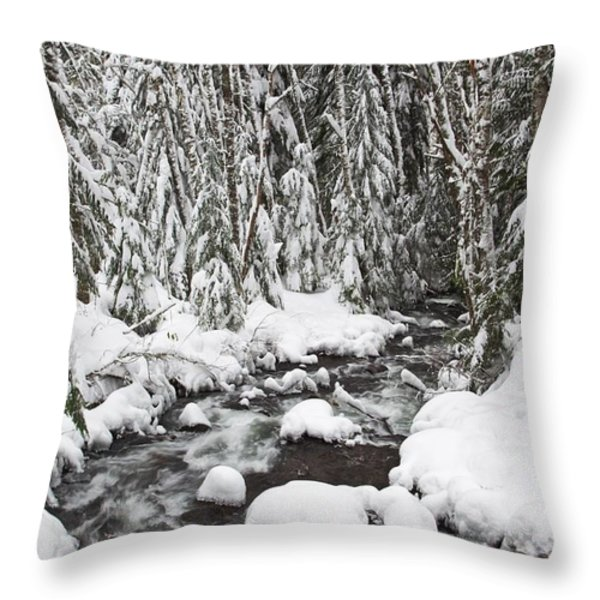 Winter Snow Along Still Creek In Mt Throw Pillow by Craig Tuttle