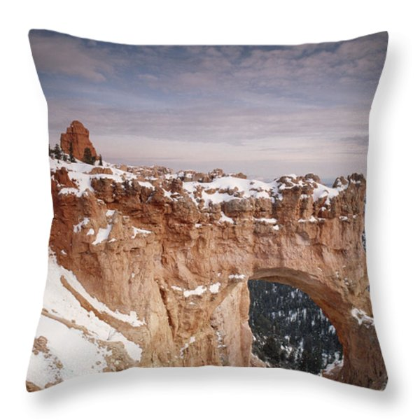 Winter Snow Covers The Eroded Natural Throw Pillow by Gordon Wiltsie