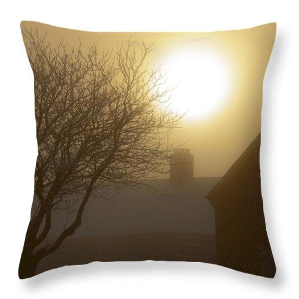 Winter Sun Throw Pillow by Svetlana Sewell