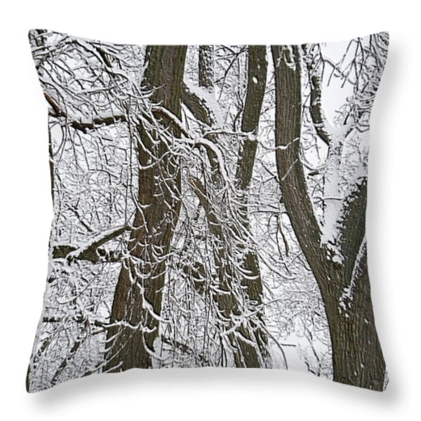Winter Trees  Throw Pillow by Aimee L Maher Photography and Art