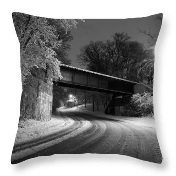 Winter's Beauty Throw Pillow by Joel Witmeyer