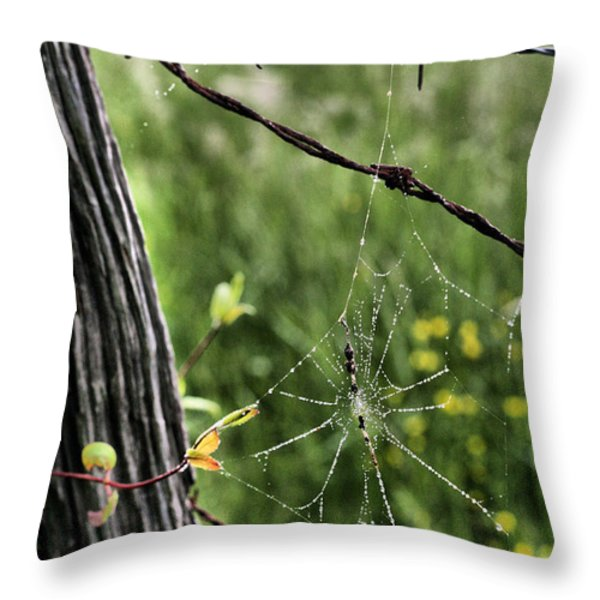 Wired Throw Pillow by JC Findley