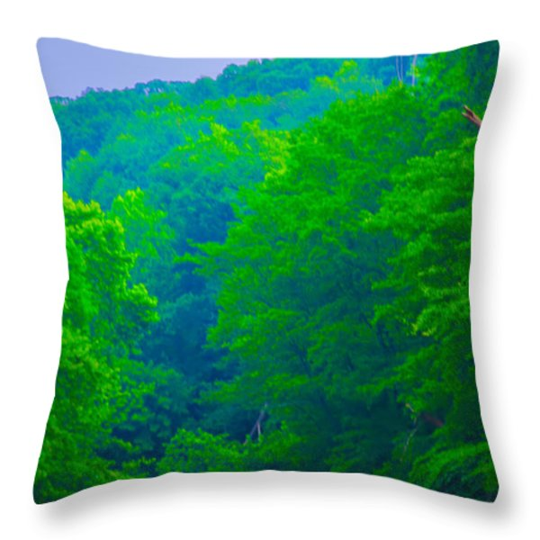 Wissahickon Creek Throw Pillow by Bill Cannon