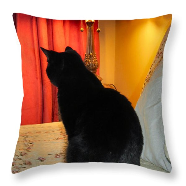 Witches Cat Throw Pillow by Michelle Milano