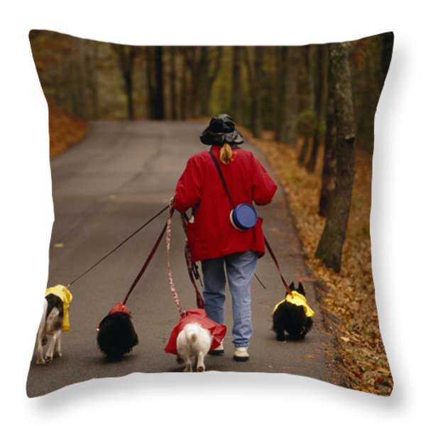 Woman Walks Her Army Of Dogs Dressed Throw Pillow by Raymond Gehman