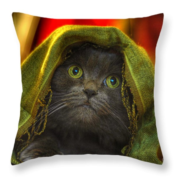 Wonder Throw Pillow by Joann Vitali