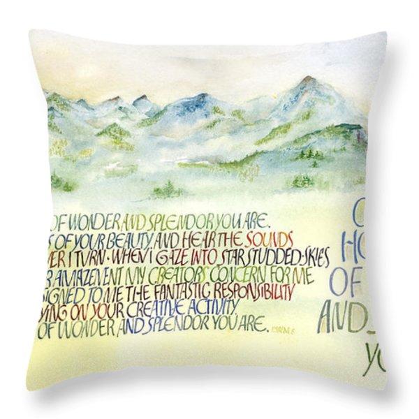 Wonder Splendor II Throw Pillow by Judy Dodds