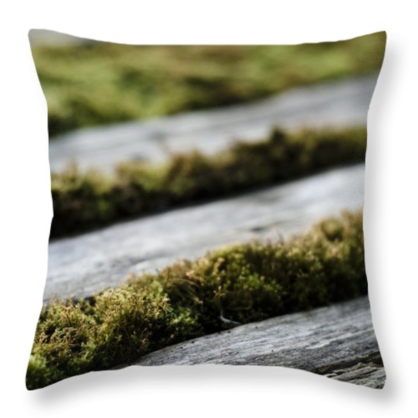 Wood And Vegetal Throw Pillow by Marcio Faustino