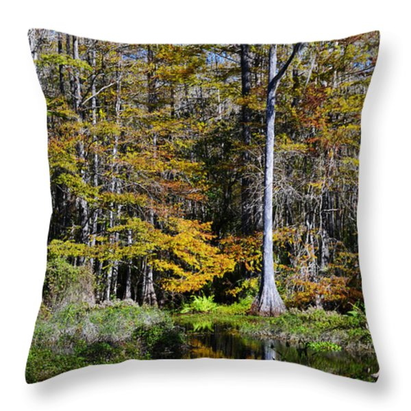 Wood Duck Pond Throw Pillow by Melanie Moraga