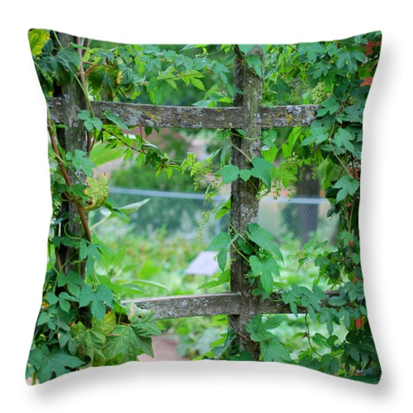 Wooden Trellis and Vines Throw Pillow by Nancy Mueller