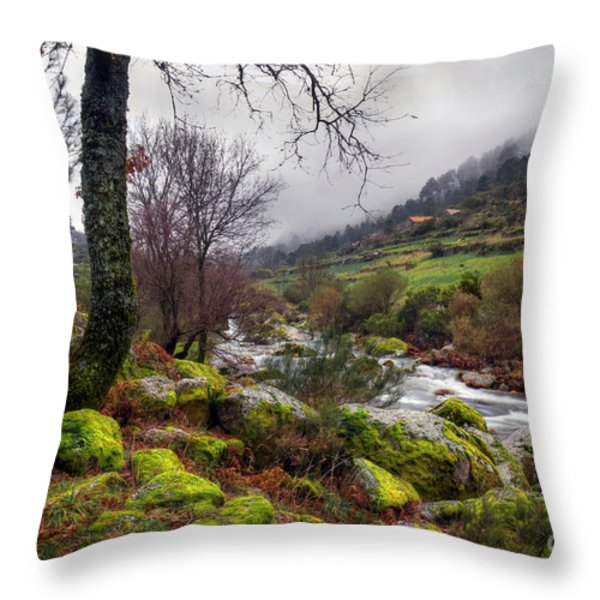 woods landscape Throw Pillow by Carlos Caetano