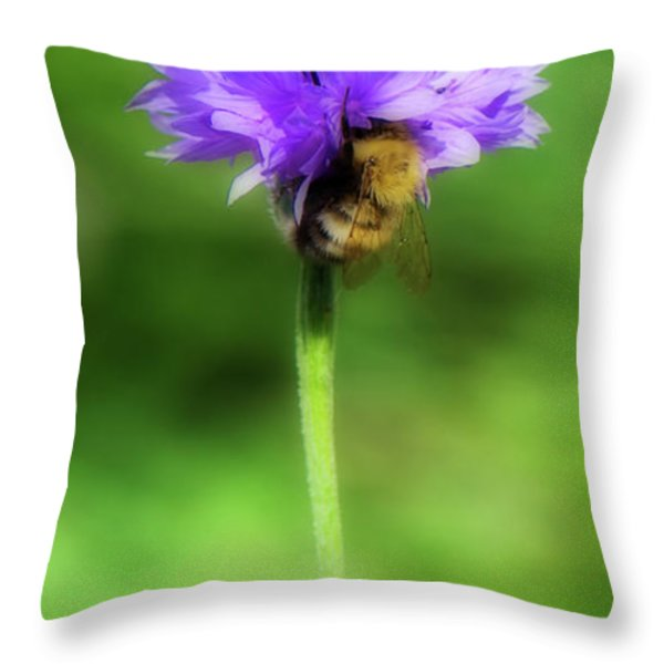 Work Mundane - Change Your Perspective Throw Pillow by Lisa Knechtel