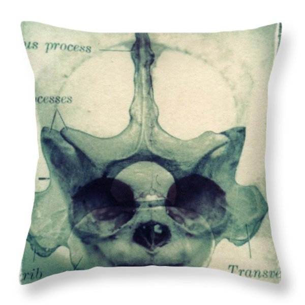 X Ray Terrestrial No. 13 Throw Pillow by Jane Linders