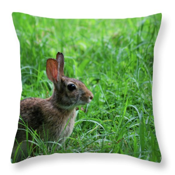 Yard Bunny Throw Pillow by Randy Bodkins