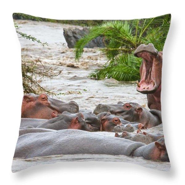 Yawning Hippo Hippopotamus Amphibius Throw Pillow by Carson Ganci