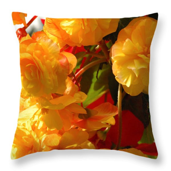 Yellow Begonia Flowers.  Victoria Throw Pillow by Darlyne A. Murawski