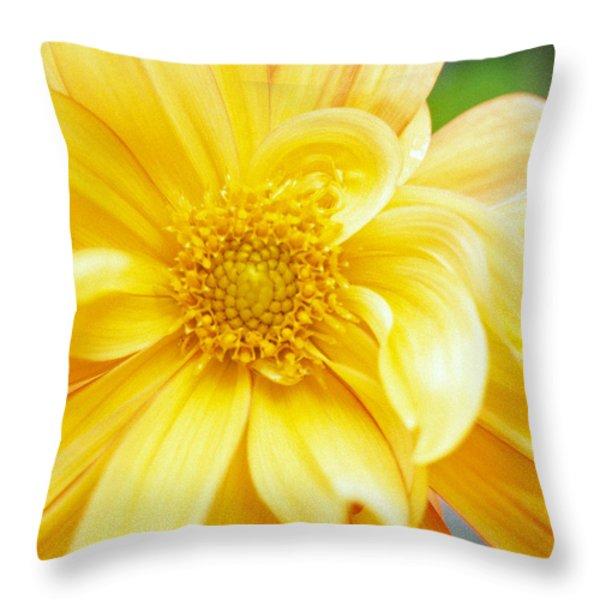Yellow Dahlia Throw Pillow by Kathy Yates