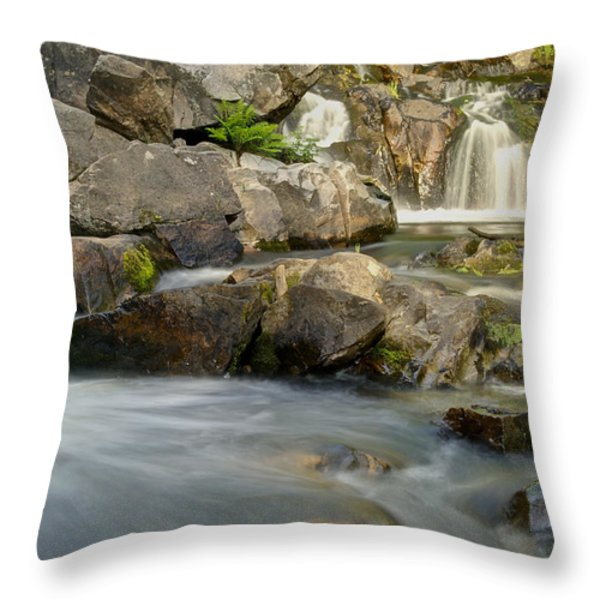 Yellow Dog Falls 4246 Throw Pillow by Michael Peychich