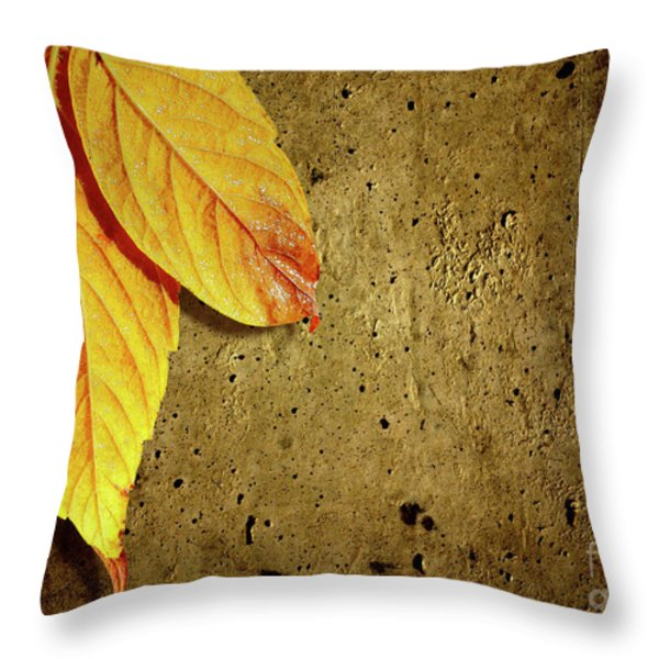 Yellow Fall Leafs Throw Pillow by Carlos Caetano