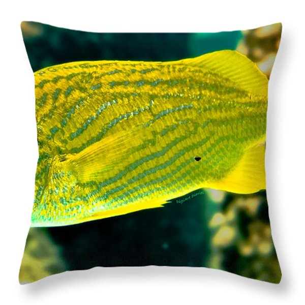 Yellow Fellow Throw Pillow by DigiArt Diaries by Vicky B Fuller