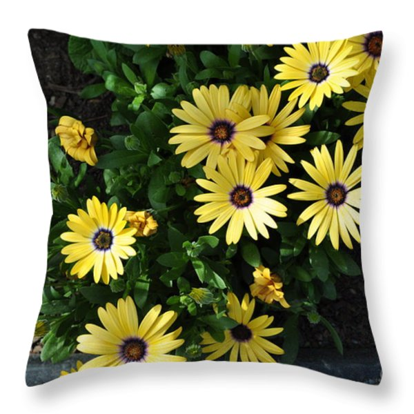 Yellow Fireworks Throw Pillow by Luke Moore