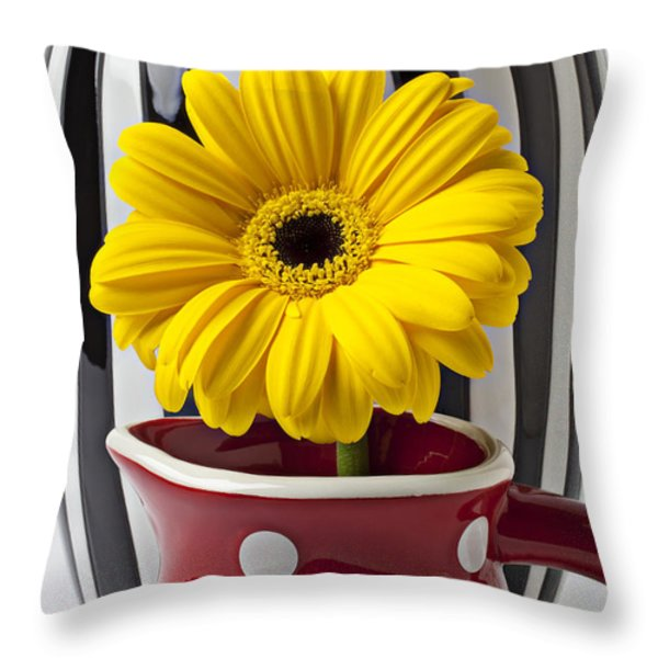 Yellow mum in pitcher  Throw Pillow by Garry Gay