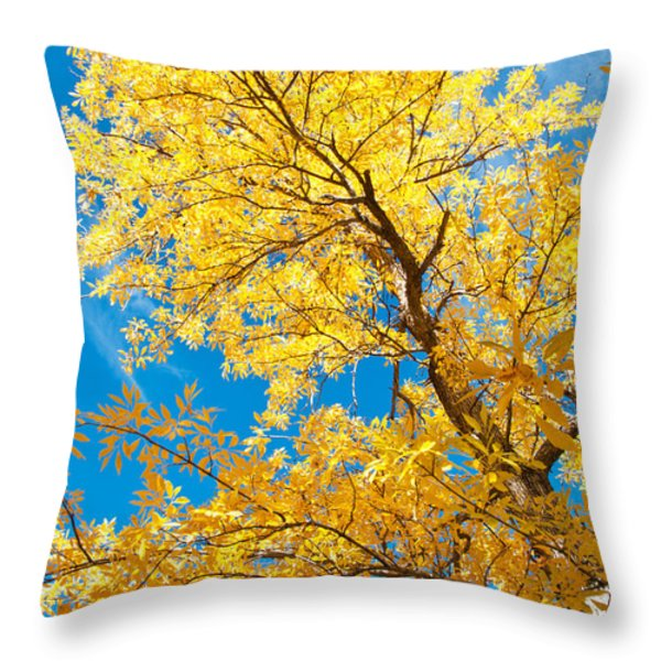 Yellow On Blue Throw Pillow by Bob and Nancy Kendrick