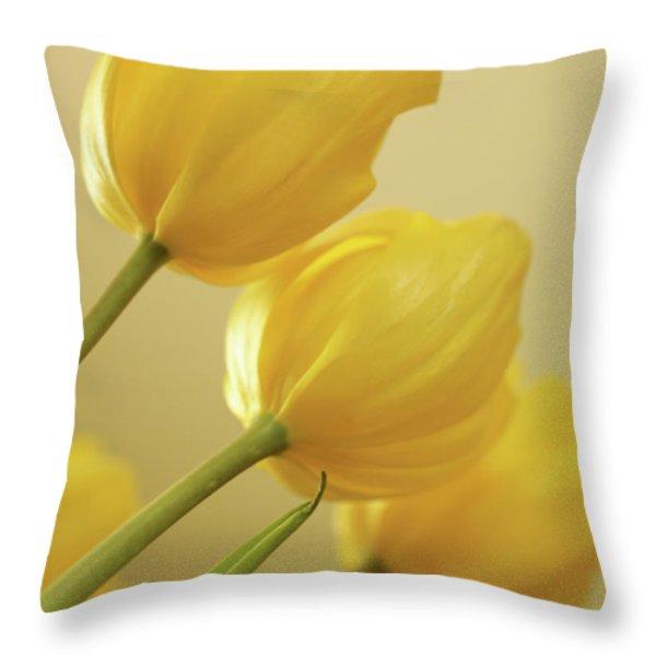 Yellow Tulip Trio Throw Pillow by Bonnie Bruno