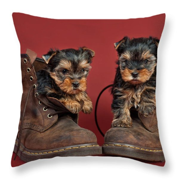 Yorkshire Terrier Puppies Throw Pillow by Marta Holka