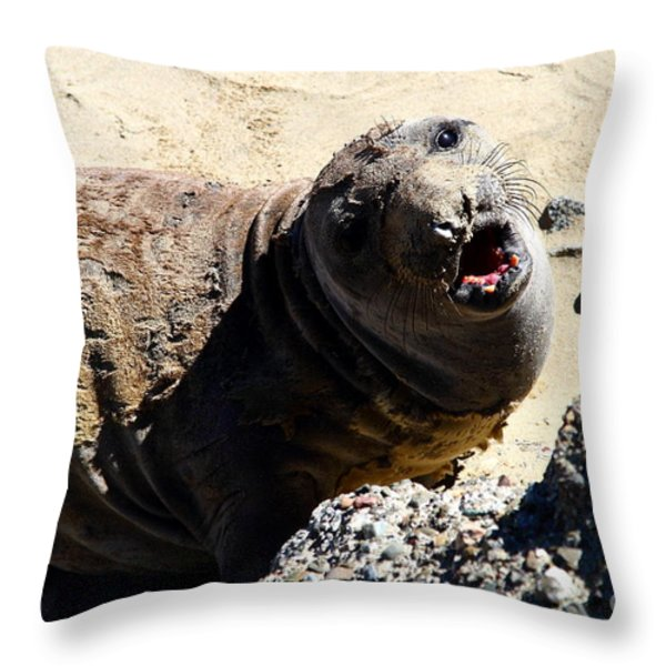 Young Elephant Seal Molting . 7D16100 Throw Pillow by Wingsdomain Art and Photography