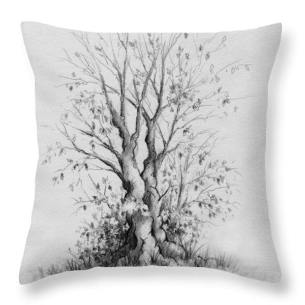 Young Tree Throw Pillow by Rachel Christine Nowicki