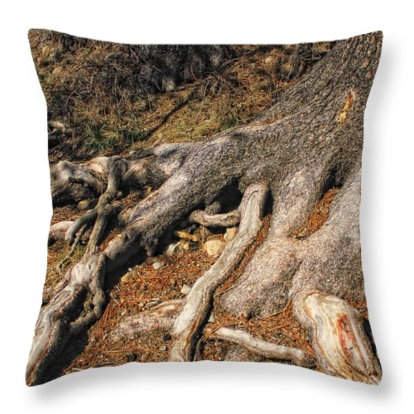 Your Roots Are Showing Throw Pillow by Donna Blackhall