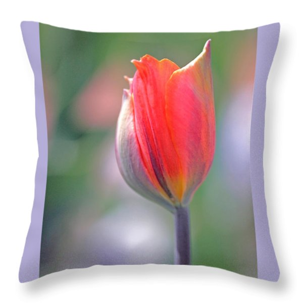 Youthful Exuberance Throw Pillow by Rona Black