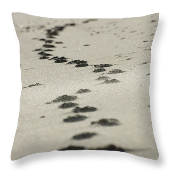 Zen footsteps on the snad Throw Pillow by AdSpice Studios