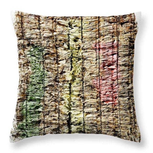 recycled paper Throw Pillow by BERNARD JAUBERT