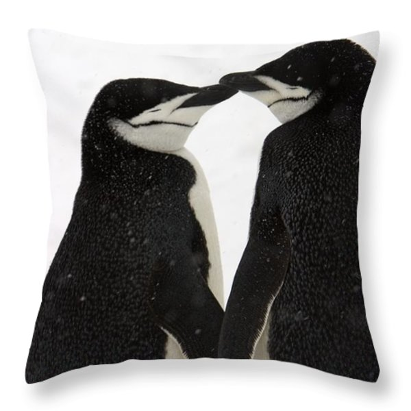 A Pair Of Chinstrap Penguins Throw Pillow by Ralph Lee Hopkins